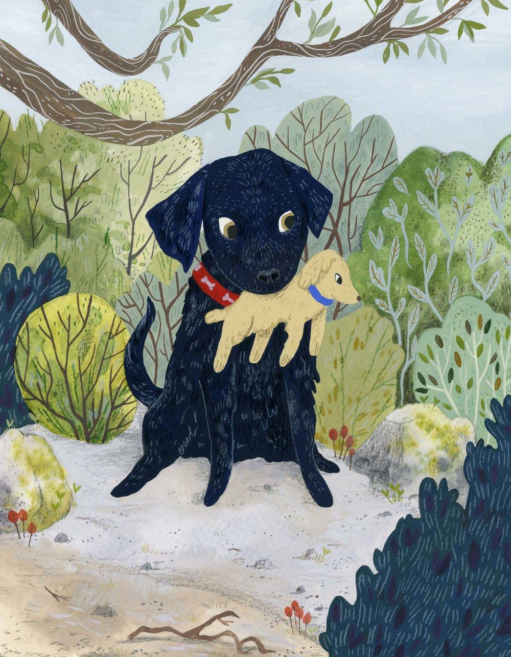 Pet Portrait with watercolour, gouache and coloured pencil.