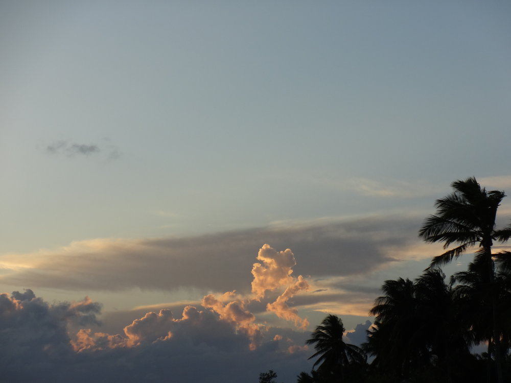 palms and clouds sunset.jpg