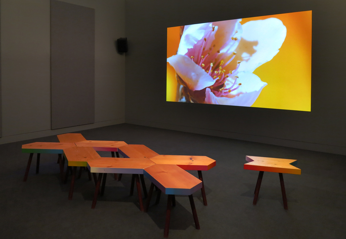 The Pollinators , 2014, Installation view at The Hammer Museum. Video with sound, sound by Luke Fischbeck, custom seating Sarah Rara and Anzfer Farms