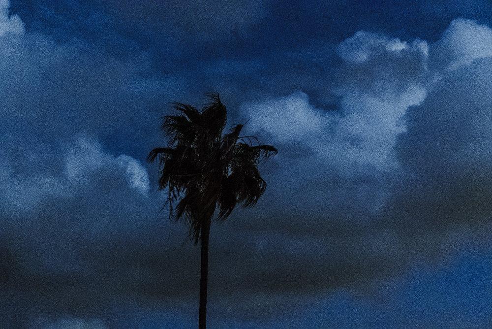 The Sunset Strip
