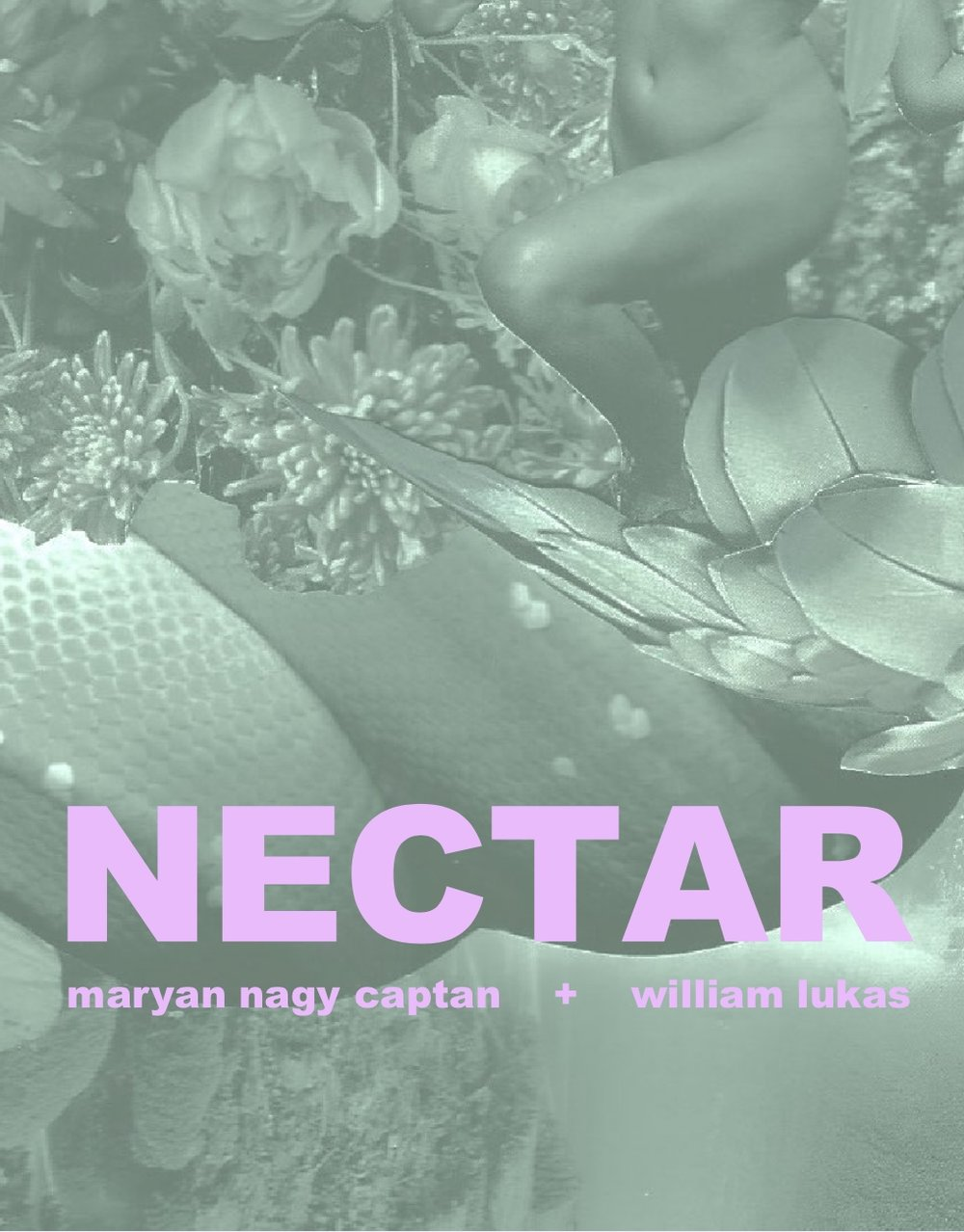 Read NECTAR, the new ekphrastic collaboration by Maryan Nagy Captan & artist William Lukas -