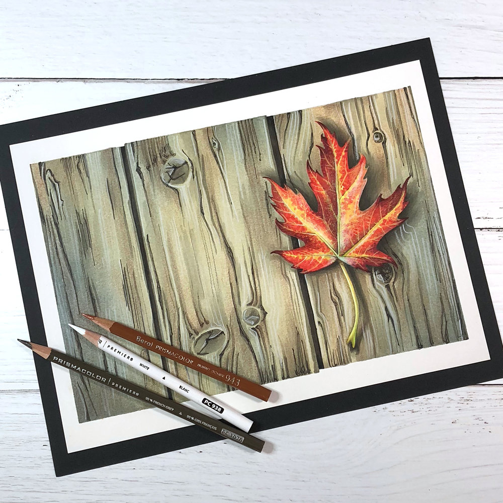 Learn how to color realistic shadows and add dimensional shade with Copic Markers and colored pencils. | #copic #coloredpencil #coloring #artlessons #realisticcoloring