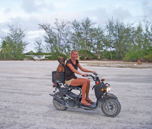Our transportation on Norman's Cay, typically used to navigate a very long potholey road. The airstrip was the only part of the island that was actually paved.
