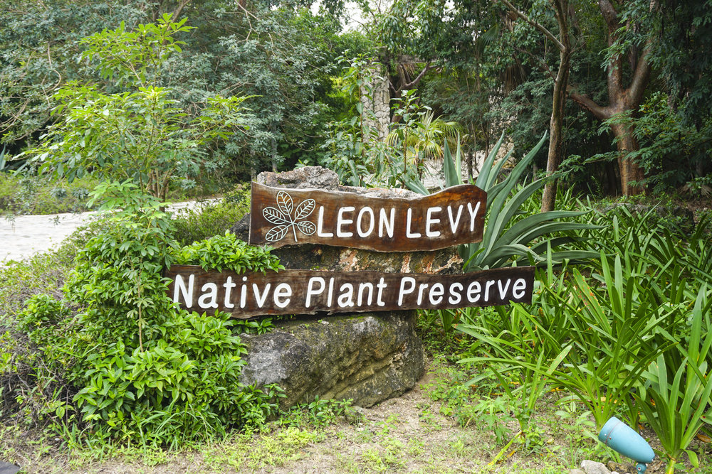 Leon Levy Nature Preserve