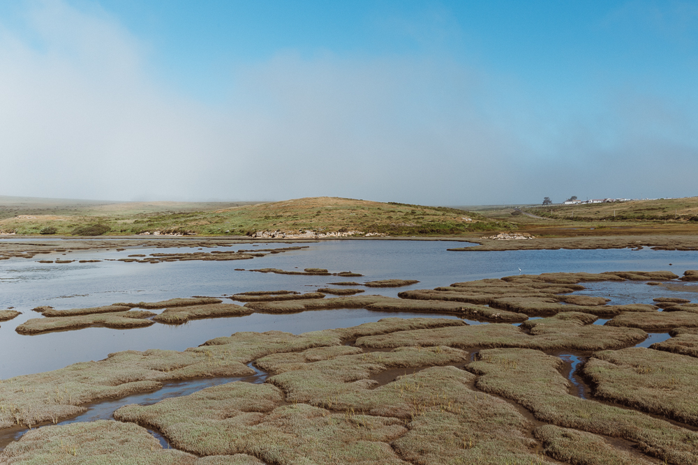 The Point Reyes inlet is called Drakes Estero and it's one of only two marine wilderness areas in the nation.