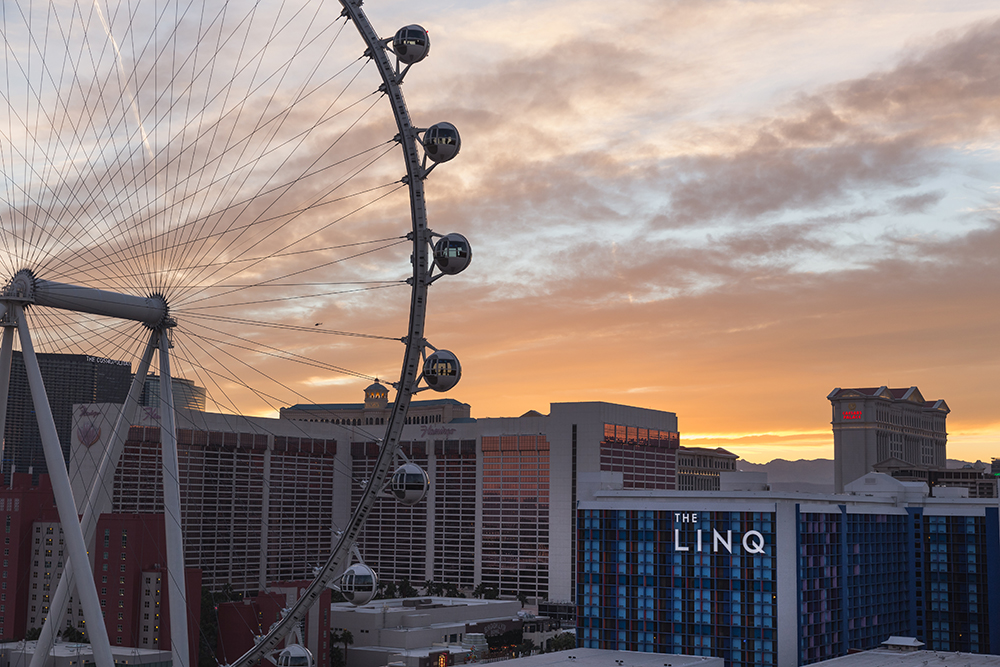 The LINQ    #LINQlife Campaign