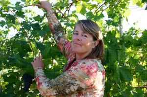 Serendipity Winery owner Judy Kingston tends to her Naramata vineyard