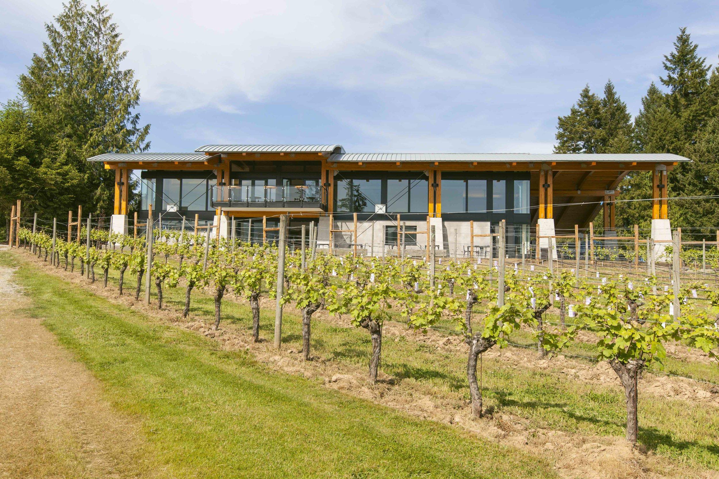 bg-winery-01-creditderekfordsmall