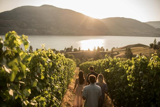 okanagan wine initiative.jpg