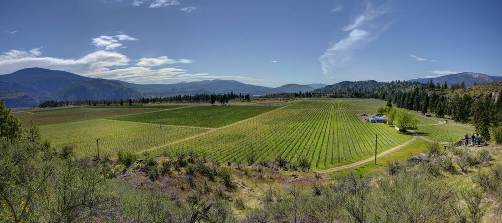 Okanagan Crush Pad winery acquires Secrest Mountain Vineyard.