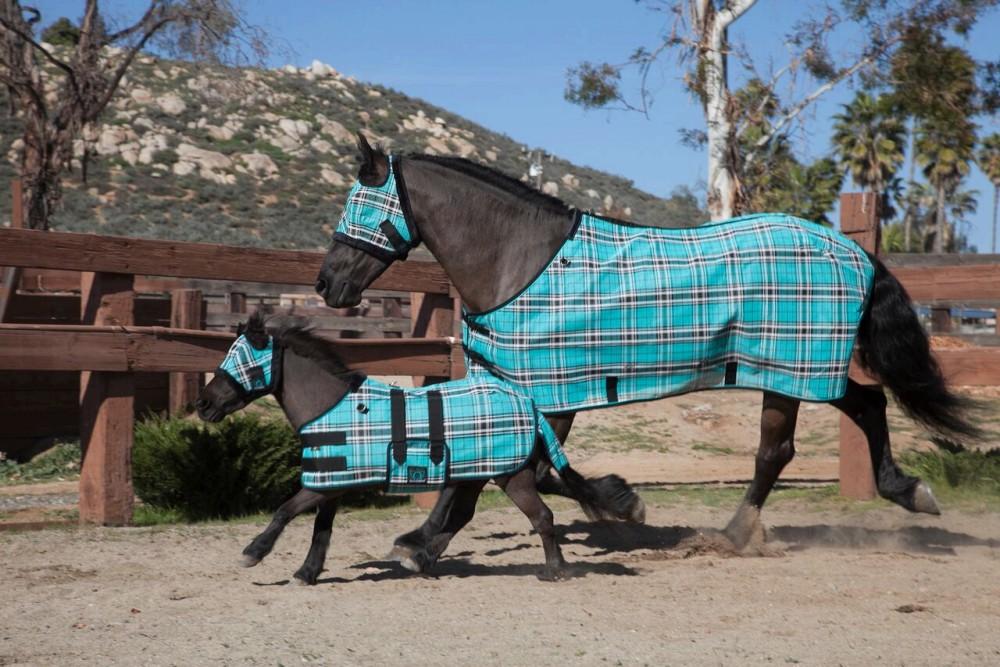 kensington-miniature-horse-protective-fly-sheet-M2.jpg