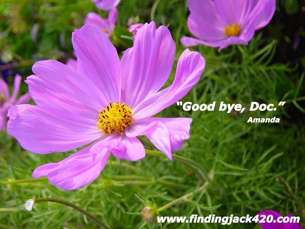 1-Goodbye Doc.jpg