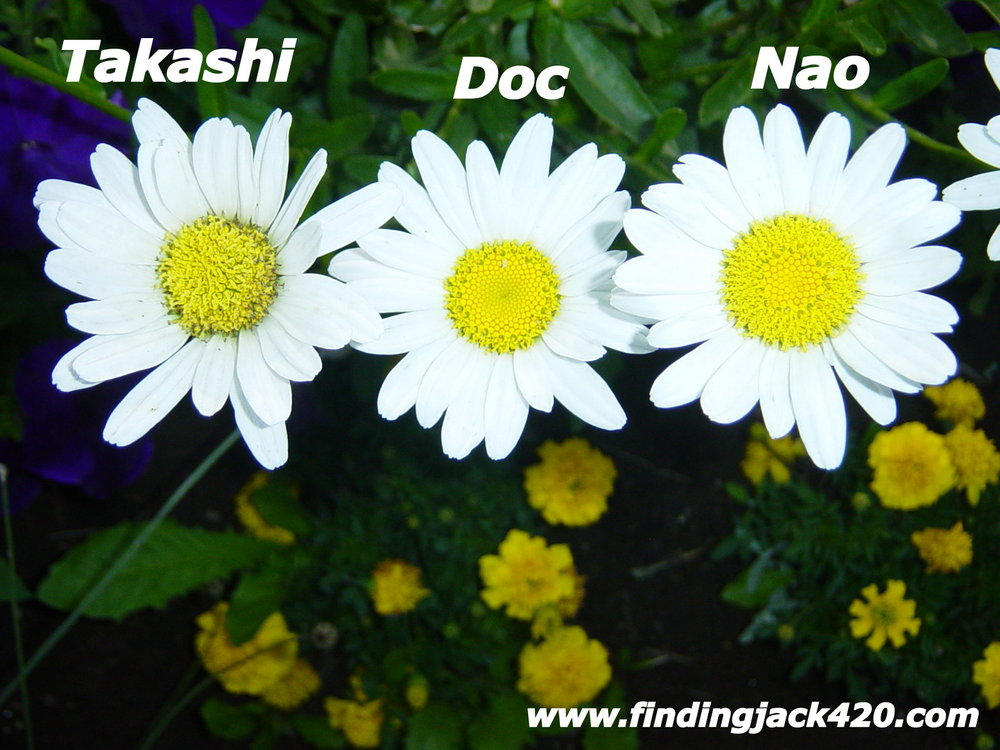 1-Takashi, Nao and Doc.jpg