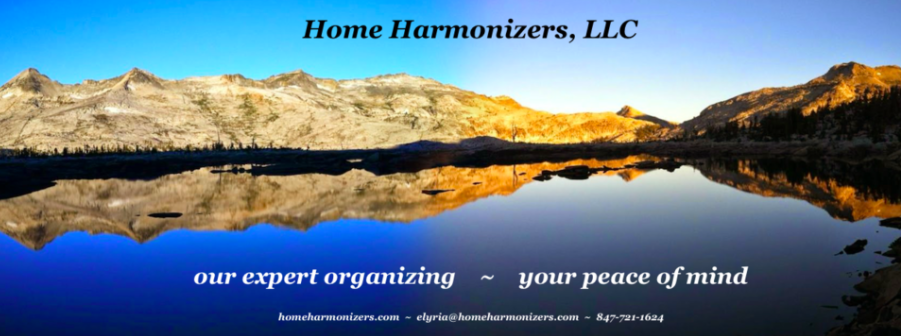 Check out my first business, Home Harmonizers -- my sliding scale works with every budget.