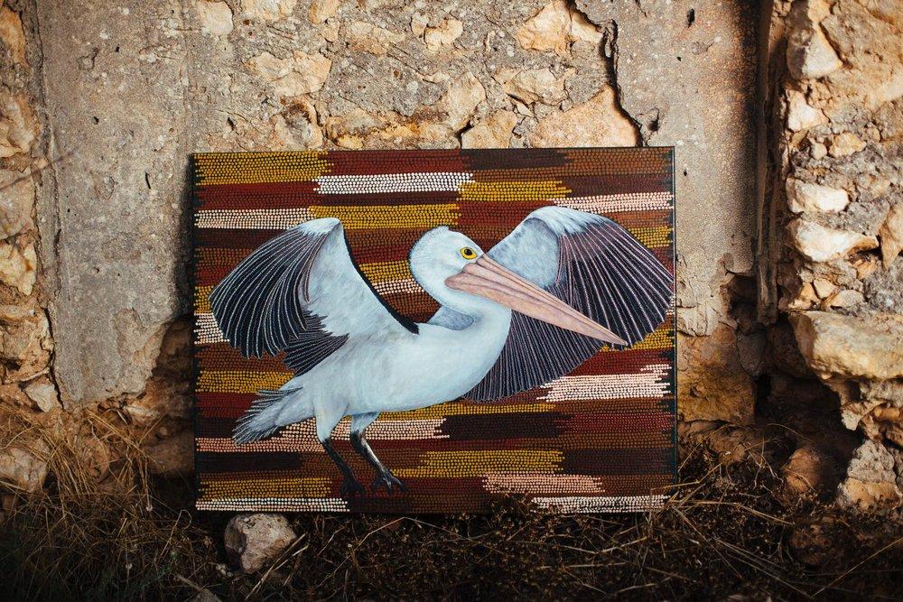 Ngori (Pelican)
