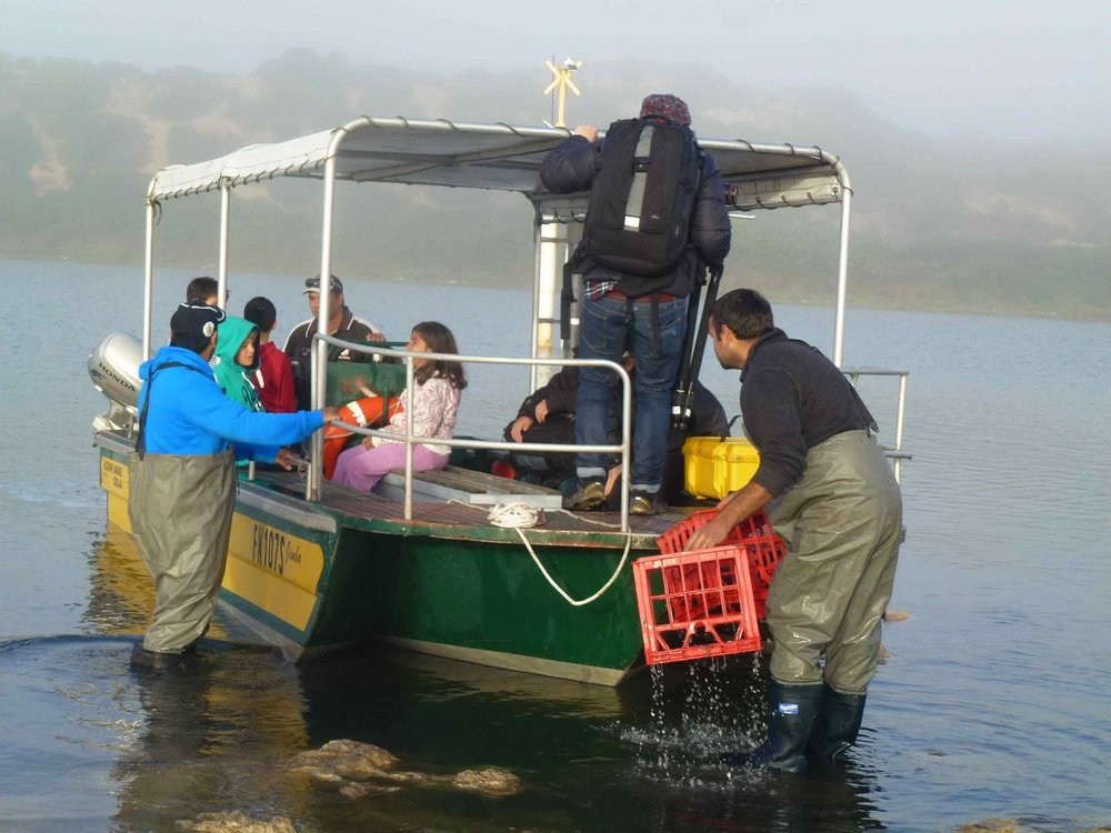 Loading up at Hacks Point to cross the Coorong to get to the beach. Photo Carl Kuddell 2014