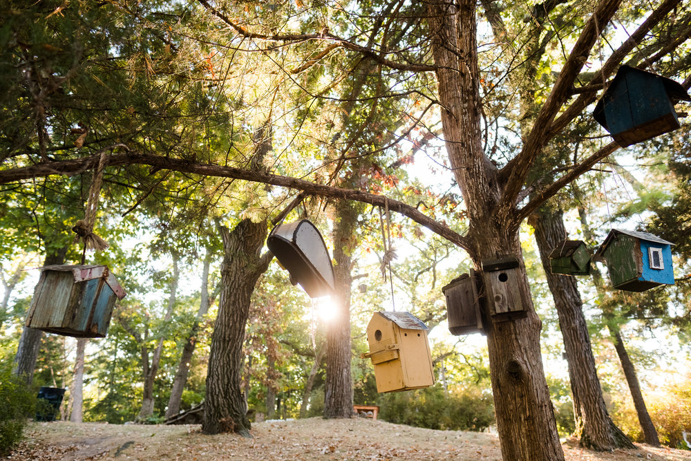 Camp photos-44.jpg