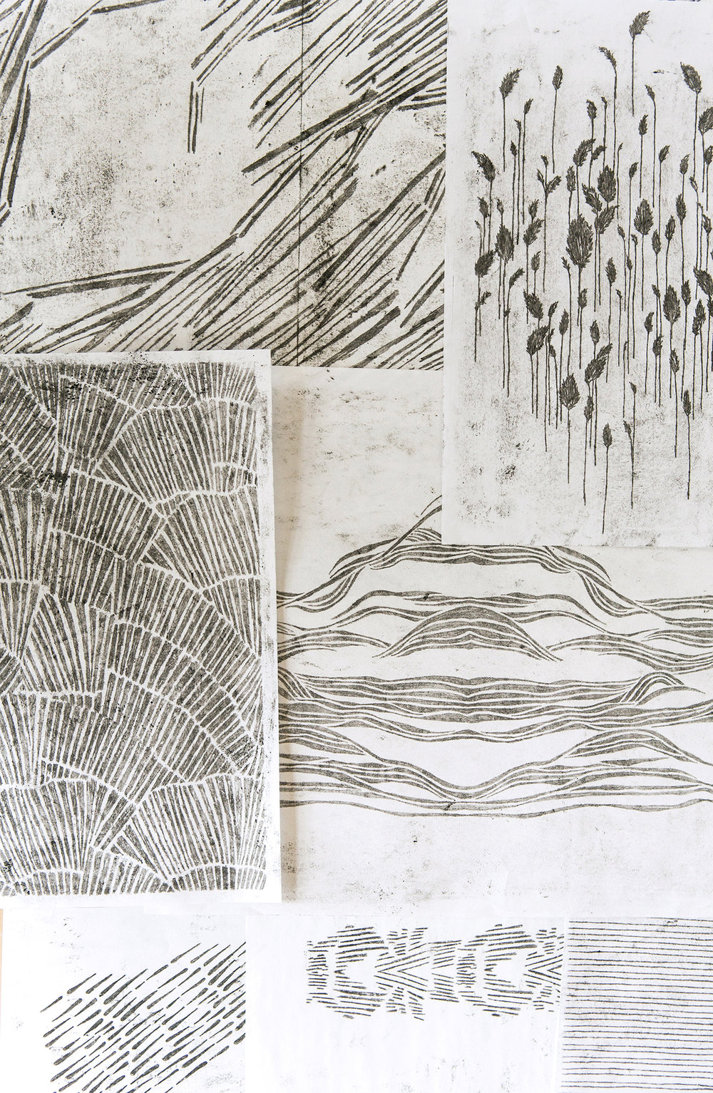 FAYCE_drawings2.jpg