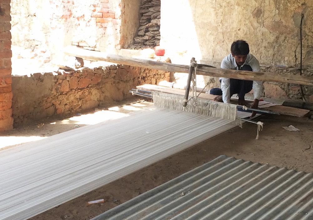 Tantuvi in Rajasthan1.jpg