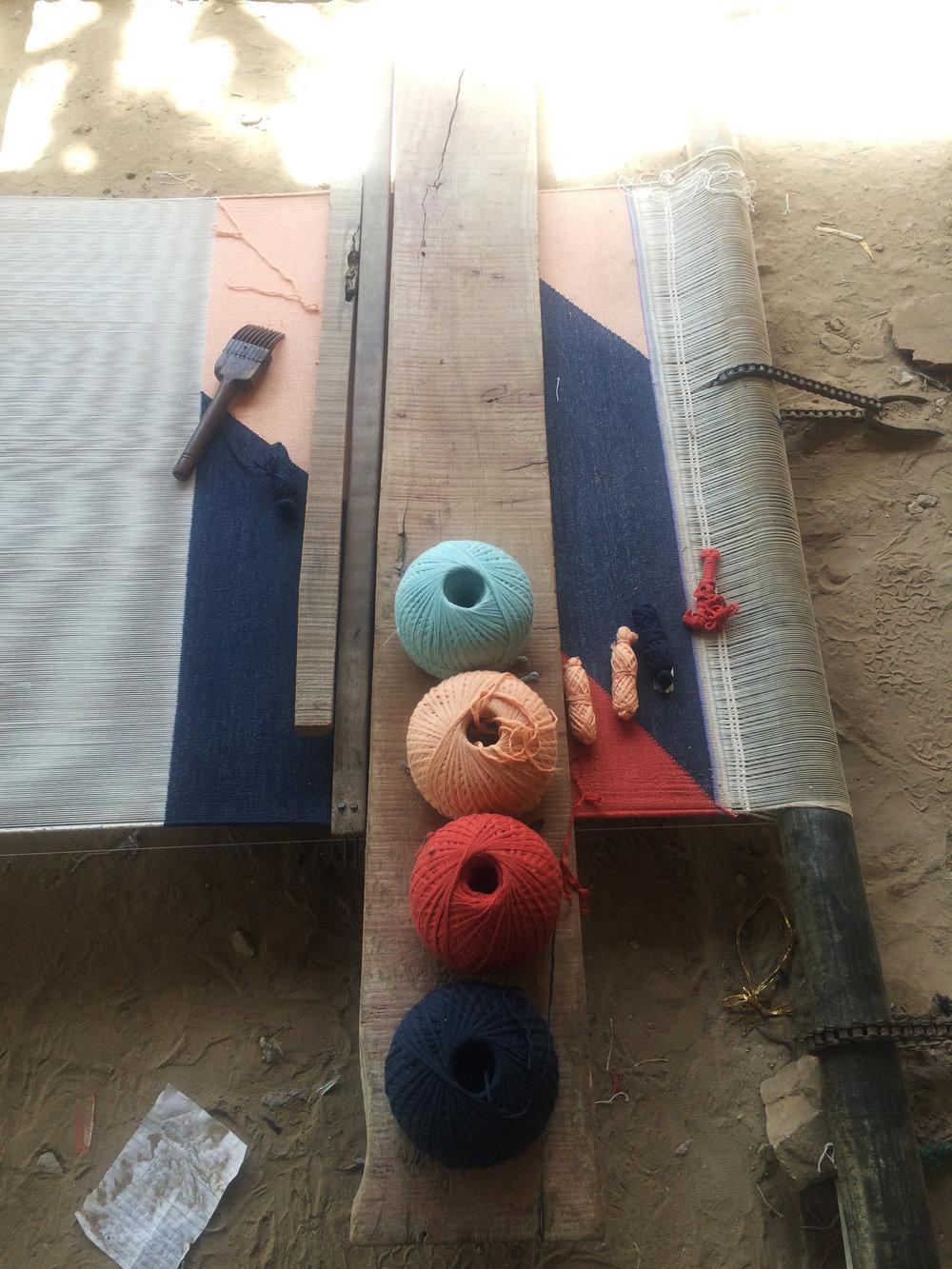 Tantuvi in Rajasthan2.jpg