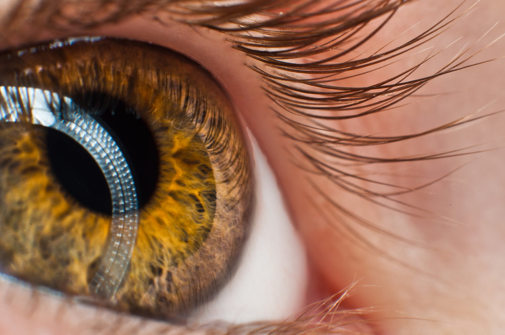 Green Eye (1).jpg