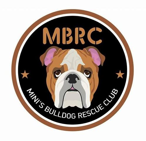 Mini's Bulldog Rescue Club -