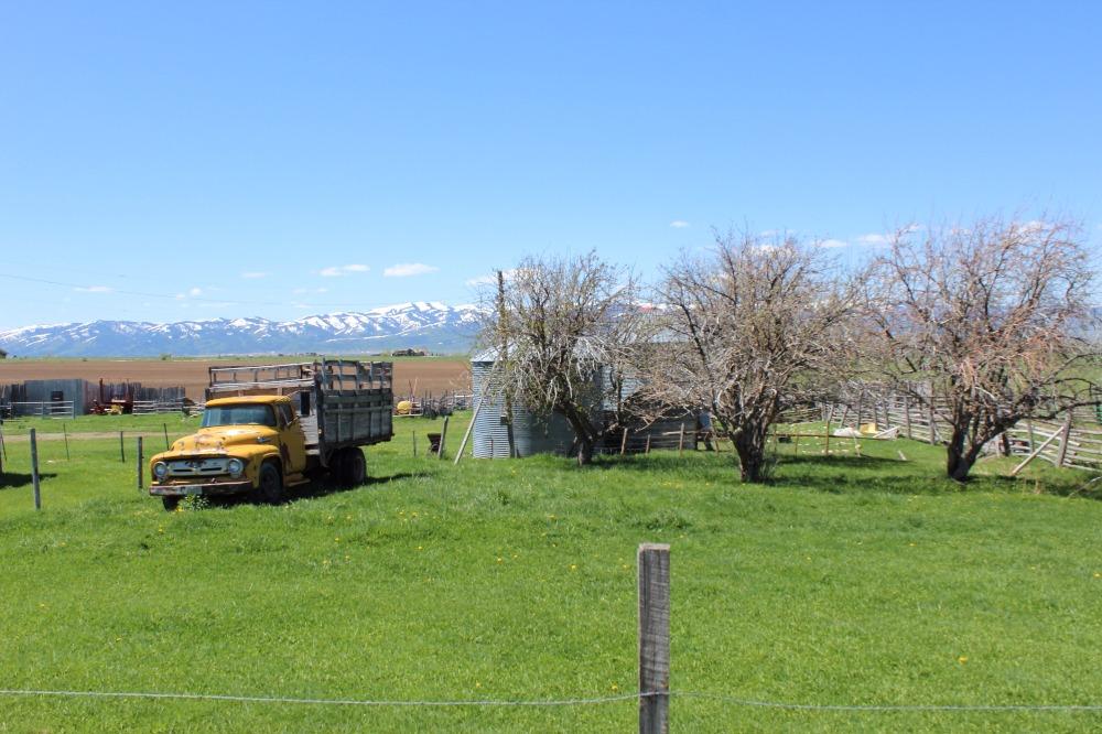 teton-valley-yellow-truck.jpg