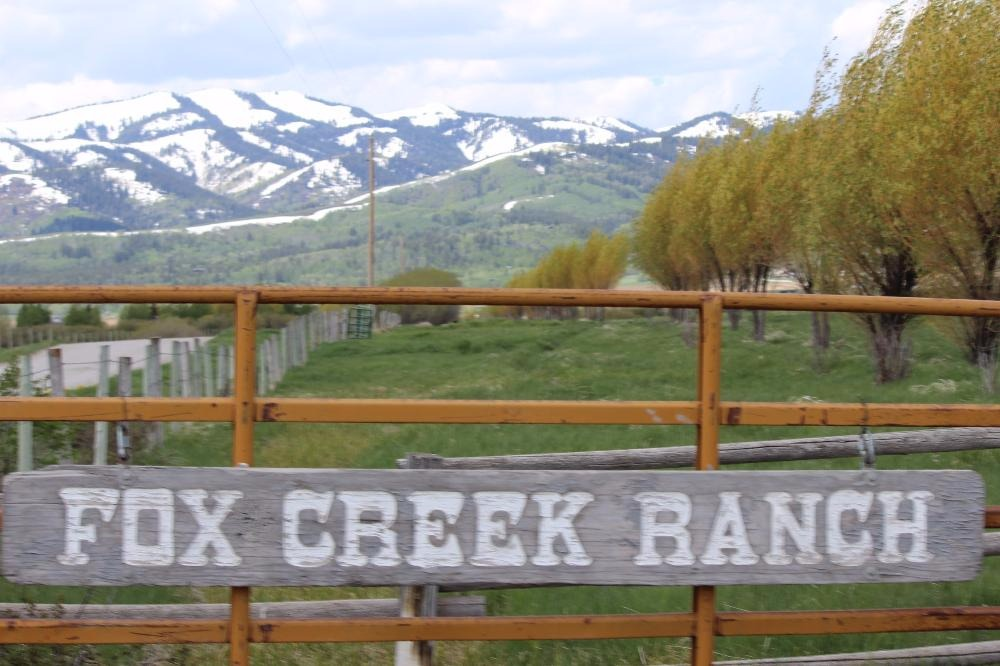 foxcreek-ranch.jpg