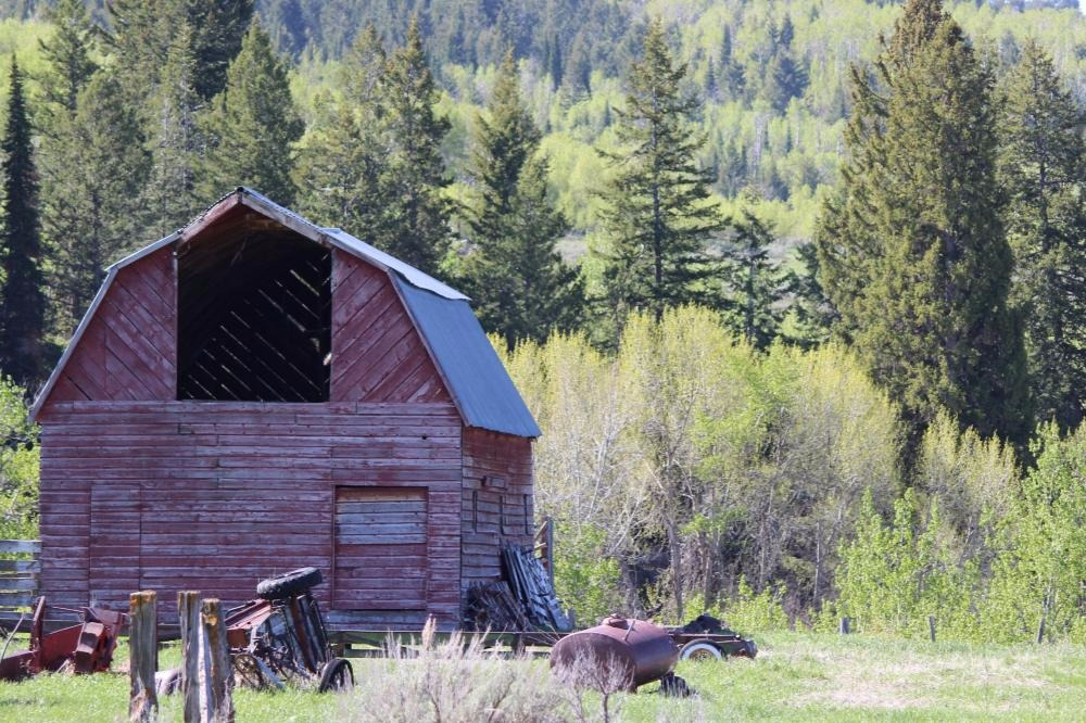 Taken less that 10 minutes from your campsite, Teton Valley has hidden treasures at every turn. -