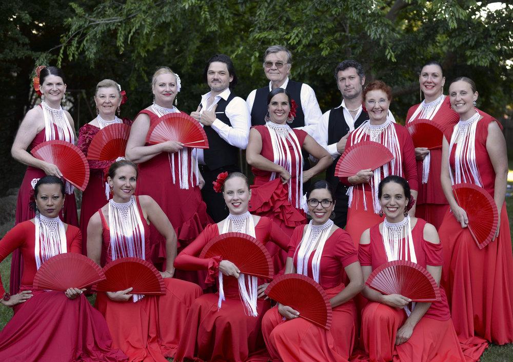FlamencoAdultGroup.jpg