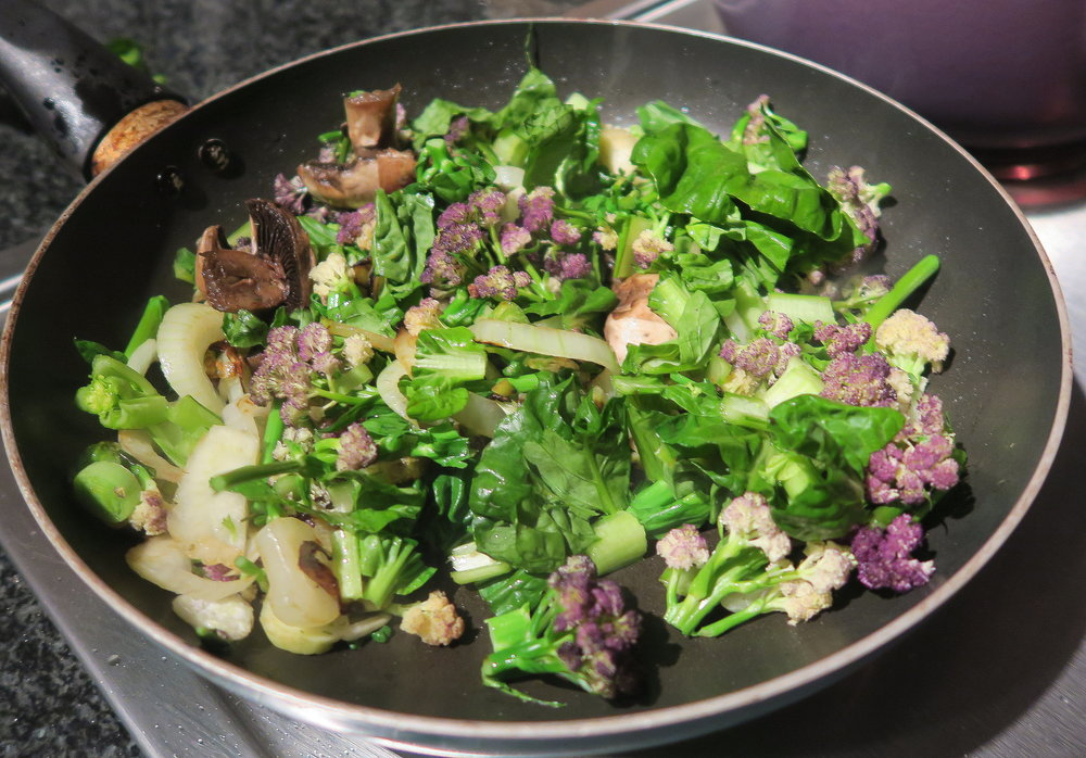 One dish meal: stir-fried onions, garlic, celery, leeks, mushrooms, fennel, wild spinach, chard, basil and a purple cauli I grew myself. For vegans, add toasted seeds and nuts. For vegetarians, feta cheese. For carnivores, chicken strips added after the onion and garlic stage. Or just eat as is.