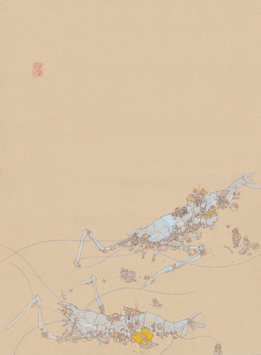 Shrimp - Web Export 1.jpg