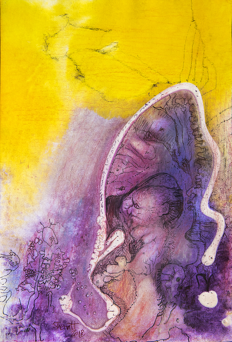 Title: 'Cocooned', 2018 Medium: Ink, pigment, and pastels on paper Size: 27 x 40 cm Location: Bruce Sherratt Gallery, Bali