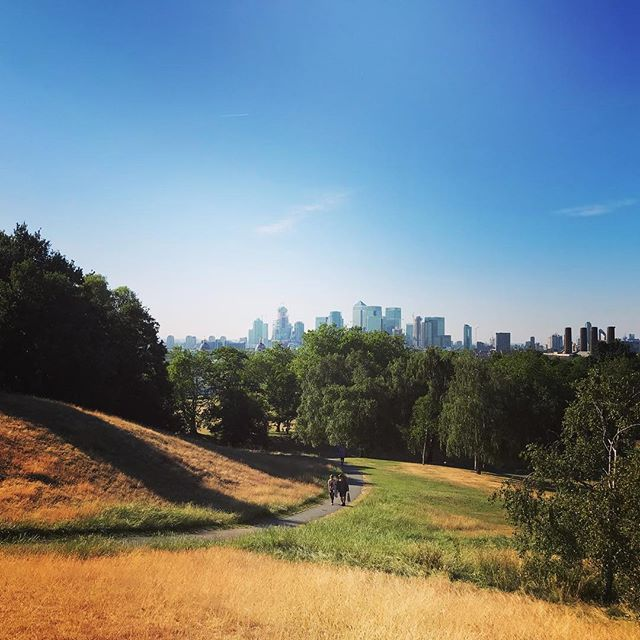 Beautiful midsummer evening - Greenwich Park, London . . . . . . #summer #summerinthecity #summerinlondon #londoninthesummertime #summertime #city #skyline #skyscrapers #canarywharf #ilovelondon #london #visitlondon #londonwalkingtours #walkingtours #theurbanrambler #cityparks #parks #parksandrecreation @the_urban_rambler_london