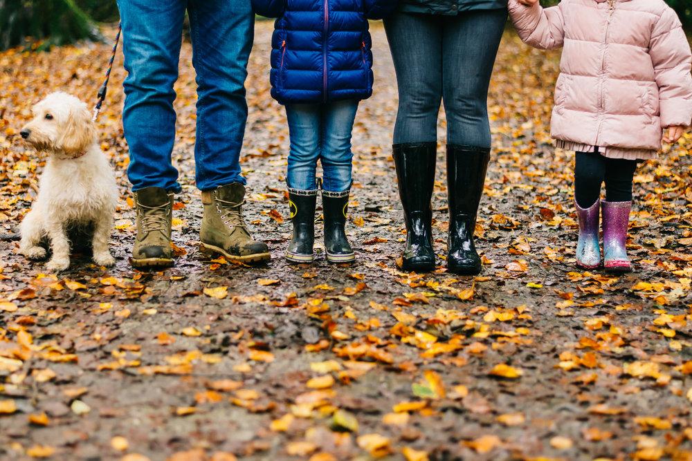 Autumn minis at Towneley Park Lancashire