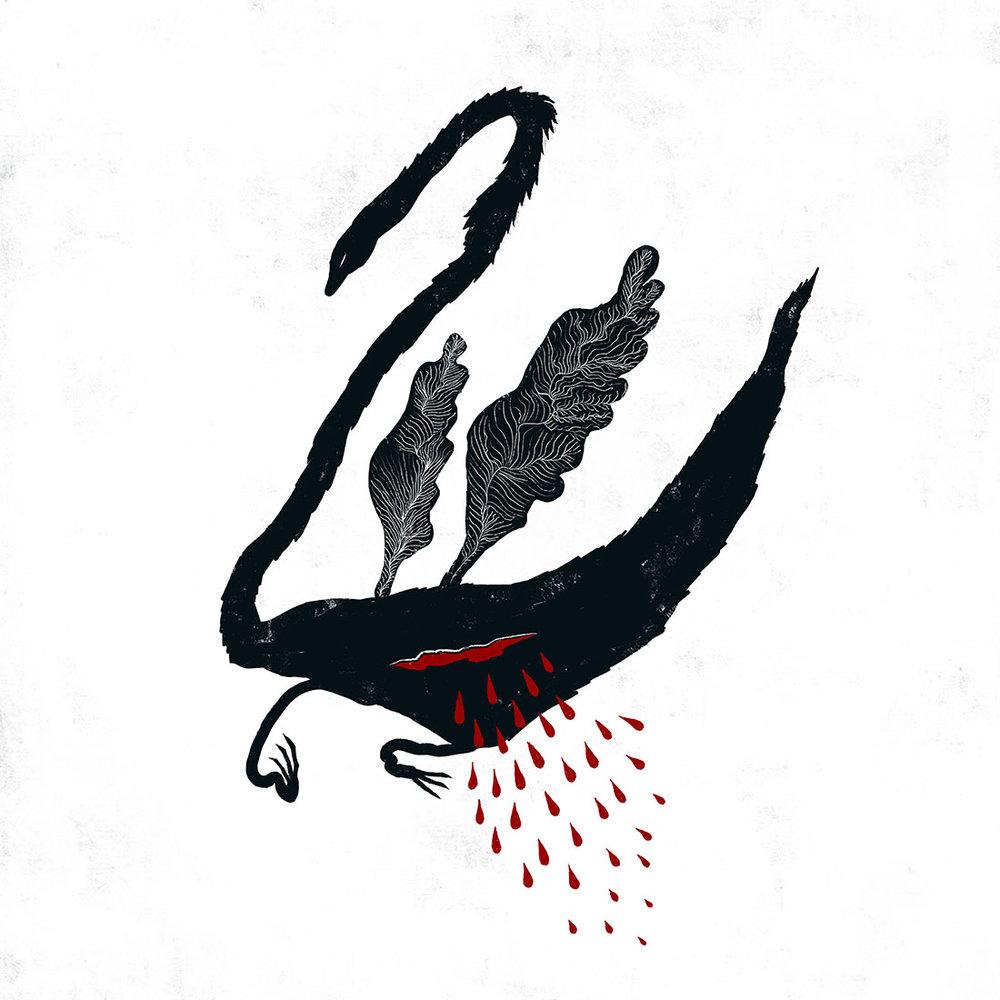 black-swan-web.jpg