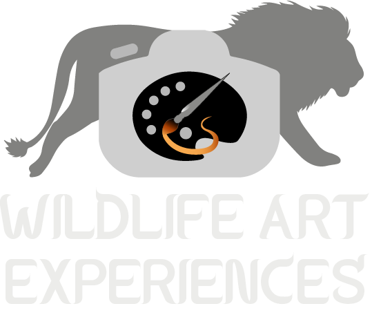 Wildlife Art Experiences