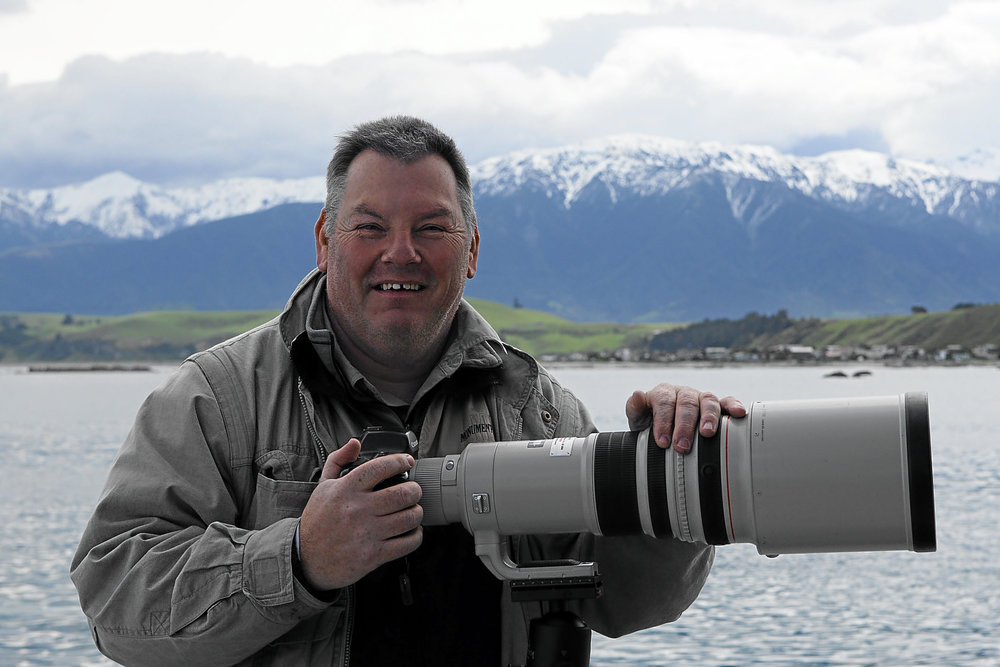 whale photography nz_002.jpg