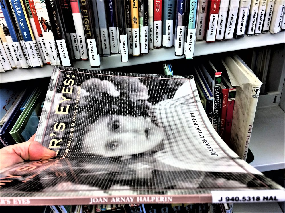 My Sister's Eyes - Hillsdale Library - Holocaust section - Catalog Number.jpg
