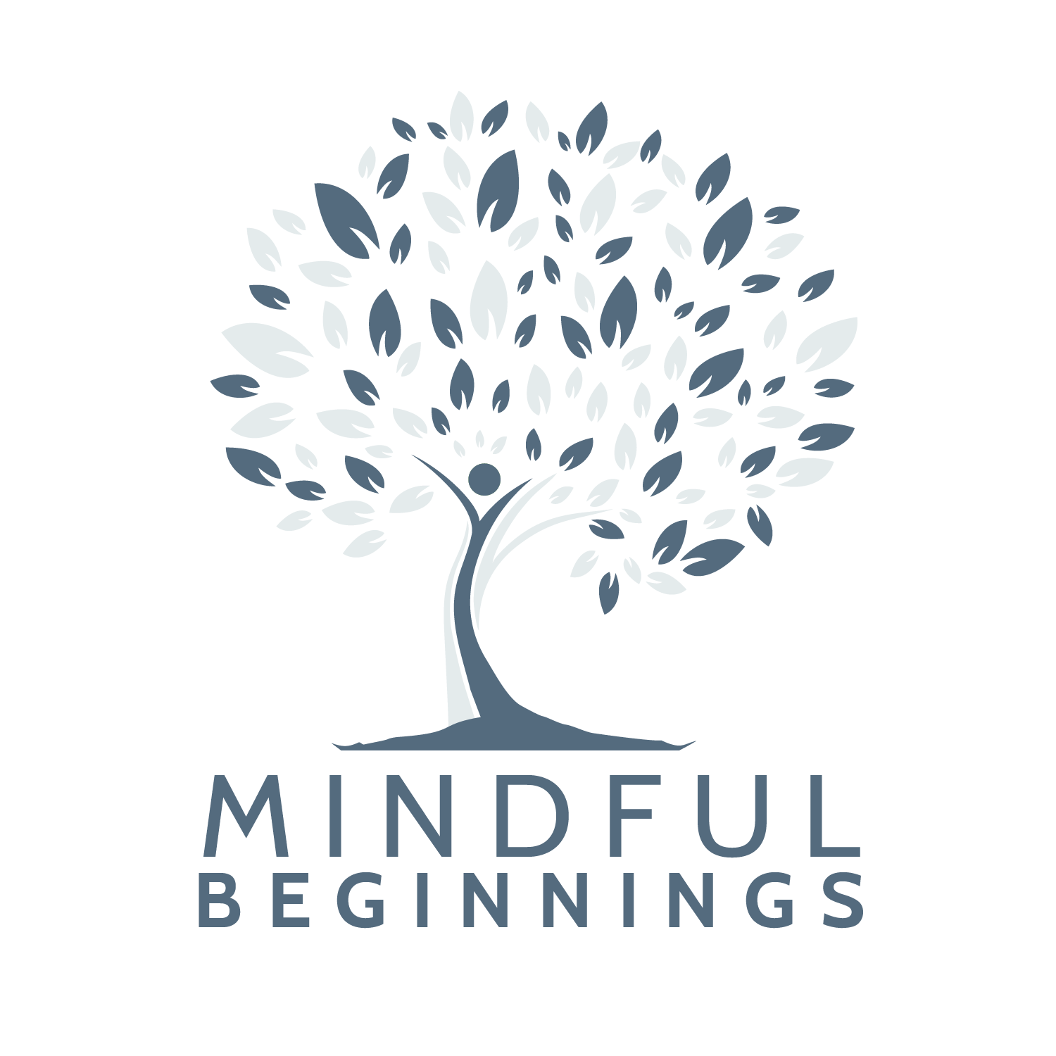Mindful Beginnings