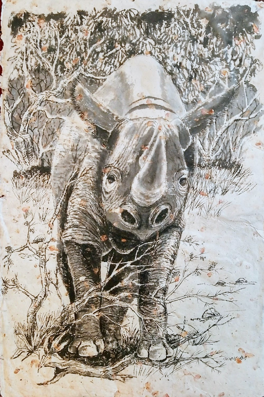 Black Rhino at Momella / Spitzmaulnashorn an Momella