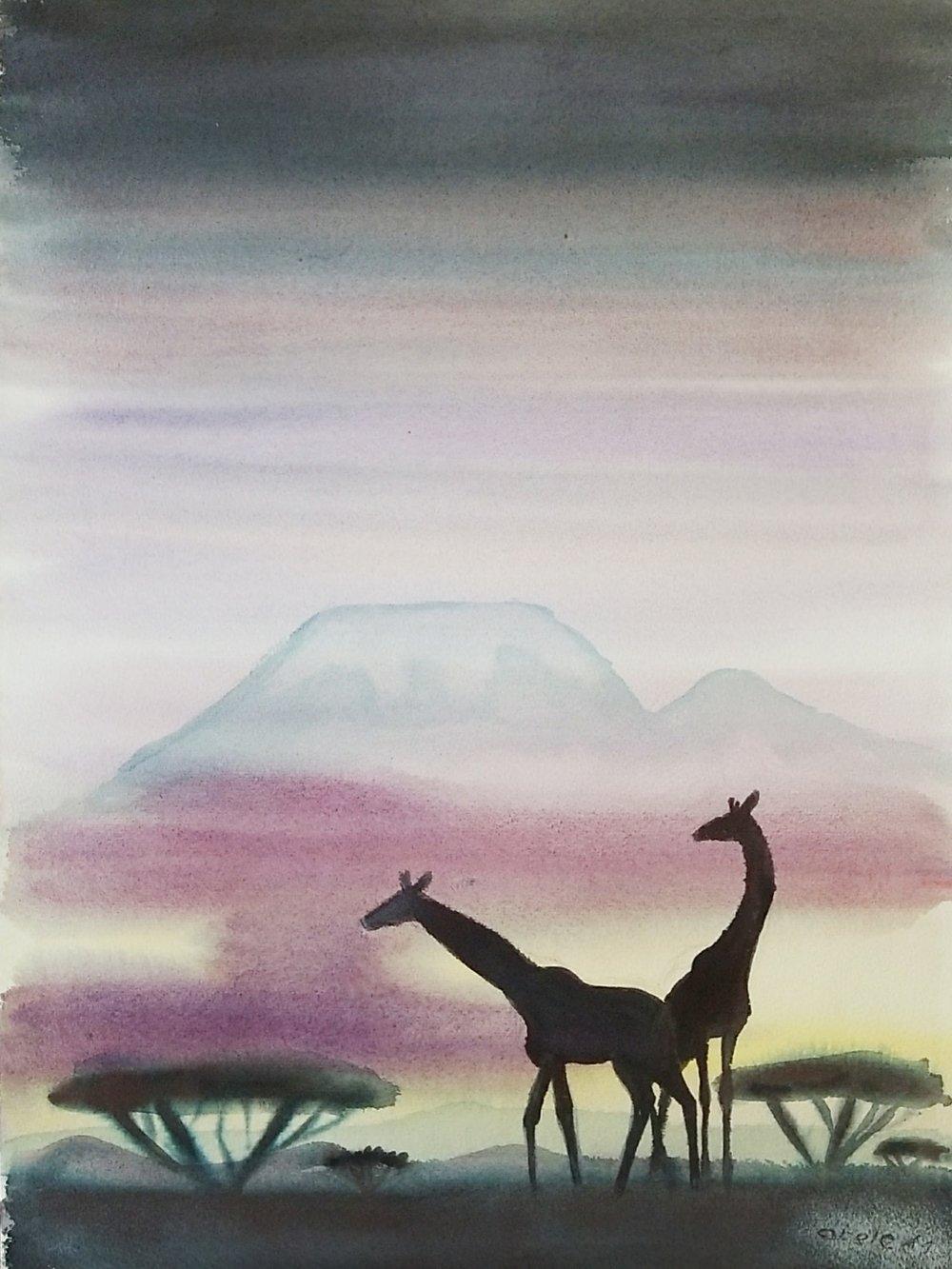 Giraffen in Schatten des Kibo Tansania / Giraffes in the Shadow of Kilimanjaro