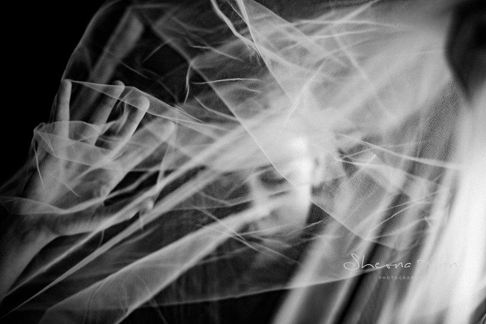 Veiled-Reality-sheona-ann-photography (8 of 19).jpg