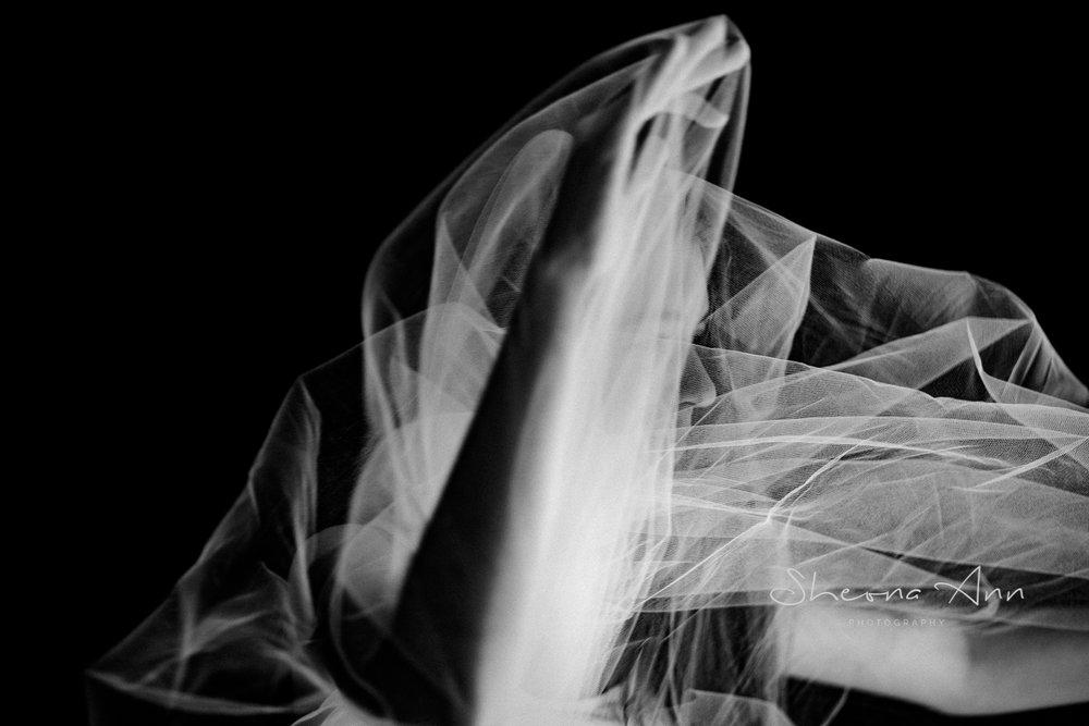 Veiled-Reality-sheona-ann-photography (19 of 19).jpg