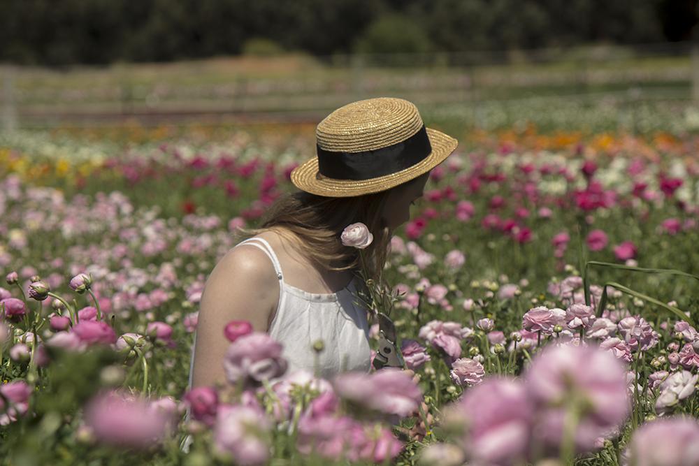 Mannerim Stables Flower Farm