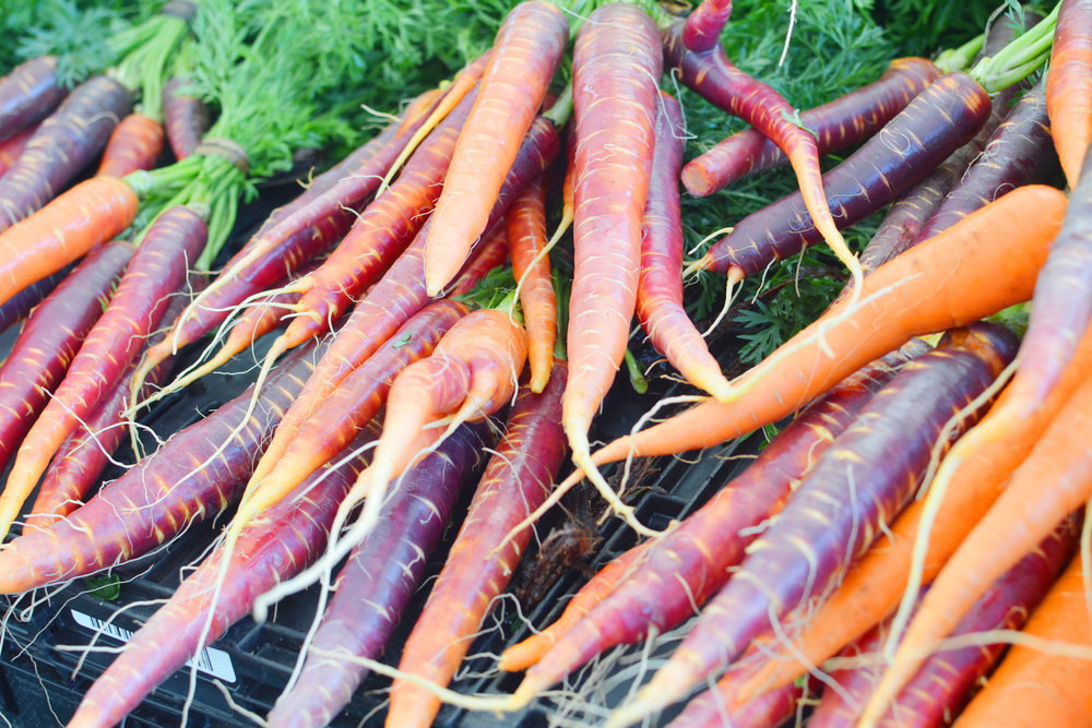 carrots2-3.jpg