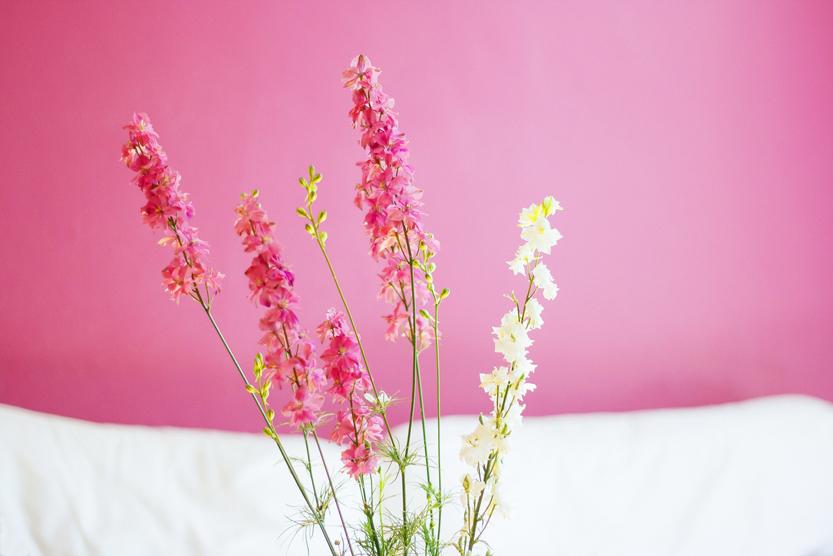pinkwildflowers2-3.jpg