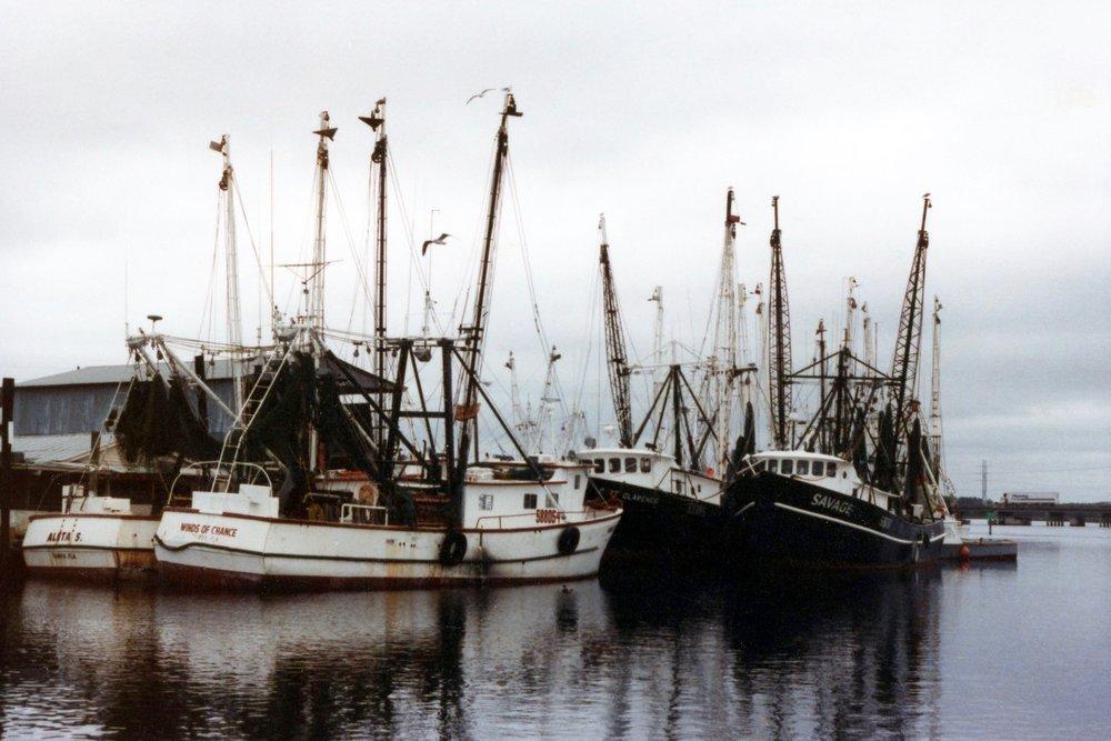 nc shrimp boat