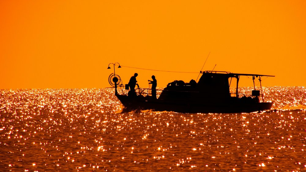 nc commercial fishing