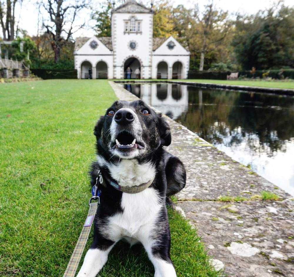 Bodnant Gardens, Conwy.